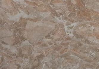 Bressia-Onicata-thumb-425x380