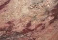 IBERE-Crema-Bordeaux-thumb-425x380