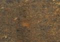 Ibere-Montana-Biege-thumb-425x380