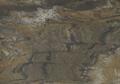 Iguana-Green-thumb-425x380