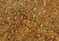 Napoleon-Gold-thumb-425x380