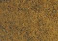 Ouro-Brasil-thumb-425x380